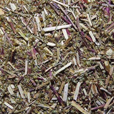 Eberrautekraut / geschnitten