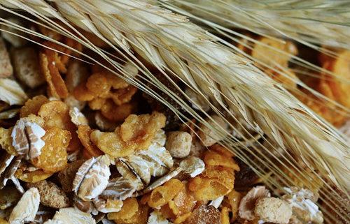 Müsli, Brei & Ballaststoffe