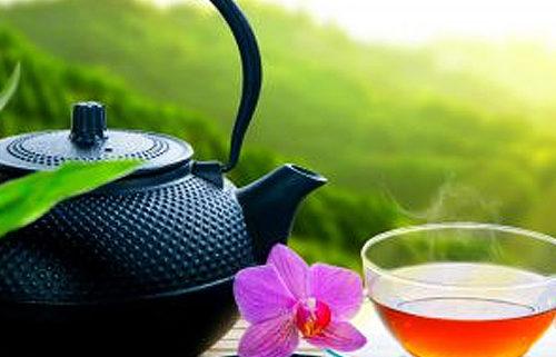 Wohlschmeckende Tees